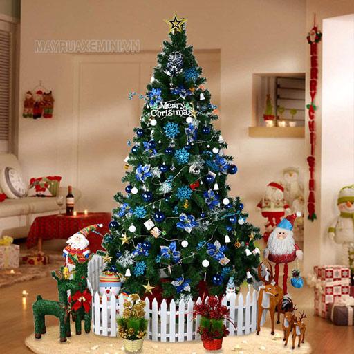 Cây thông Noel tượng trưng cho sự sống và đem tới ánh sáng và hy vọng cho chúng sinh