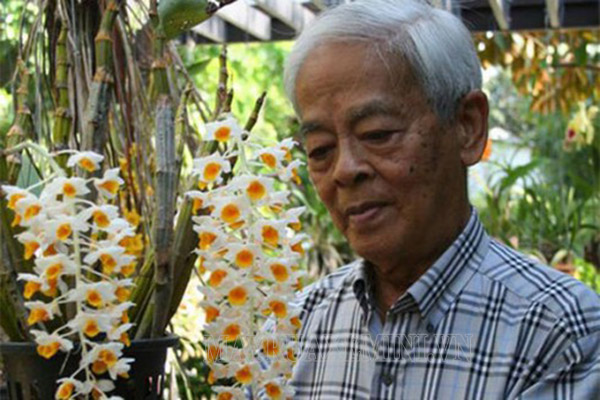 Vườn lan nhà giáo sư Rapee Sagarik